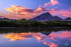 0619 IMG_6172 (JRmanNn) Tags: sunset purple lasvegas skyward wetlandspark duckcreektrail