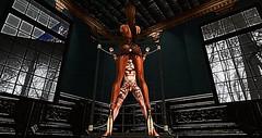 006 (djolyx) Tags: sexy fetish noir bdsm piercing sl secondlife rack plug mistress kinky slave sheer