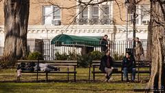 Theodore Roosevelt Park, Upper West Side, Manhattan (InSapphoWeTrust) Tags: americanmuseumofnaturalhistory manhattan newyork northamerica usa unitedstates unitedstatesofamerica upperwestside us