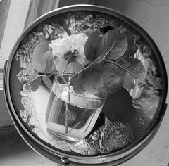 mirror and rose (Vitiaco) Tags: rose mirror ancient stillife