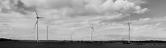 Wind Turbines. I'm a Big Fan :) (Beachcomber ( By The Bay )) Tags: weather northumberland northeast turbine windturbine windturbines 450d canoneos450d newbigginphotographygroup beachcomberbythebay