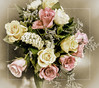 Rose Bouquet (ngr07) Tags: roses panasonic bouquet topaz zs7