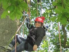 Whitsun Tree Climbing (Goodleaf Tree Climbing) Tags: tree adventure climbing isle wight activities treeclimbing goodleaf