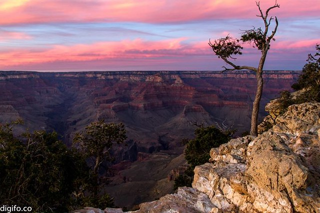 The last light - Grand Canyon, AZ If you are in US, tune in to Discovery at 8pm tonight to watch Nik Wallenda cross GC without tether. http://bit.ly/12KEsuS