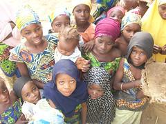 Female children in agriculture in Jigawa State (IITA Image Library) Tags: children nigeria cassava manihotesculenta jigawastate cassavasurvey