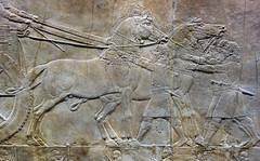 Lion Hunts of Ashurbanipal, king preparing for hunt (horses) (profzucker) Tags: sculpture london art ancient iraq lion palace relief beginning britishmuseum gypsum tigris mosul hunt assyrian excavated ashurbanipal neoassyrian ninevah rassam 645bce