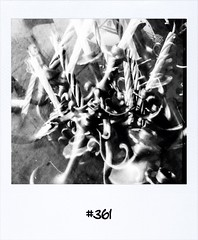 "#DailyPolaroid of 15-9-13 #361 • <a style=""font-size:0.8em;"" href=""http://www.flickr.com/photos/47939785@N05/9882112775/"" target=""_blank"">View on Flickr</a>"
