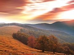 (Alin B.) Tags: autumn wild sun mist mountain fall forest sunrise woods rust ray rusty toamna alinbrotea