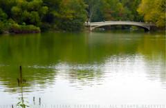 The Bow Bridge (.Tatiana.) Tags: nyc newyork centralpark manhattan bowbridge