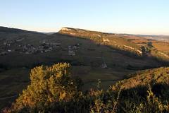 Les derniers feux du soleil (Chemose) Tags: autumn automne burgundy bourgogne vignoble vigne vinyard solutré vergisson mâconnais