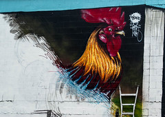 street newzealand christchurch streetart art wall architecture painting mural workinprogress nz ladder highst risefestival