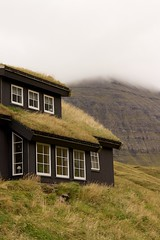 Grassy rooftops are a fairly common sight (aSnapToRemember) Tags: travel denmark faroeislands photostream