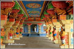 3866 - Lakshman Theertham Temple, Rameswaram (chandrasekaran a 30 lakhs views Thanks to all) Tags: india heritage tank culture traditions tamilnadu rameswaram ramayana lakshmana theertham canon60d
