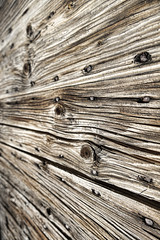 Wood (Artico7) Tags: door wood old gate knot nails scraped {vision}:{car}=0552 {vision}:{ocean}=0503 {vision}:{outdoor}=0724