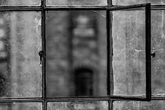 open window (bernd obervossbeck) Tags: blackandwhite bw window fenster hamburg sw speicherstadt oldwindow schwarzweis altesfenster canonef100mm128lisusm mygearandme mygearandmepremium