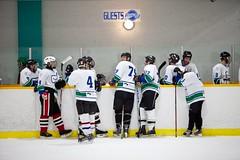 hockey28