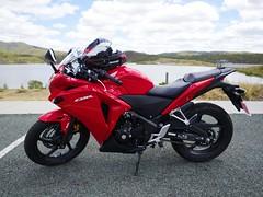 (-spam-) Tags: autumn red honda shark helmet australia olympus motorbike qld 12mm 2013 ep5 cbr250r