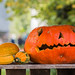 """Halloween_Pairi_Daiza_2014-7 • <a style=""""font-size:0.8em;"""" href=""""http://www.flickr.com/photos/100070713@N08/15852360224/"""" target=""""_blank"""">View on Flickr</a>"""