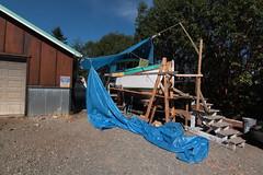 IMG_3960 - Port Hadlock WA - Northwest School of Wooden Boatbuilding - 2013 Repair and Restoration - HOBO (BlackShoe1) Tags: wood port boat washington olympicpeninsula wash pacificnorthwest wa jefferson woodenboat washingtonstate hobo woodboat boatrepair countyeast porthadlockwa boatwooden hobohobohobo hadlockjefferson countymv repairwood tugwoodtug