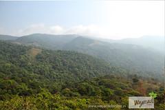 trekking-at-Muneeswaran-mudi(hill)-wayanad (wayanad tourism) Tags: trekking hill wayanad kuruvadweep kuruva muneeswaran