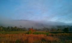 Autumn Mist (twiztid_lotus1) Tags: autumn trees mist nature beautiful fallcolors massachusetts newengland ware westernmass