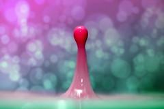 Color my drops  (2) (MBM phARTographie) Tags: color macro water milk drops eau paint bokeh couleurs sony sigma peinture lait splash alpha dye makro farbe liquid couleur proxy wassertropfen milch a77 liquide gouttes mbm colorant farbstoff alpha77 mbmphartographie flüssigkeits