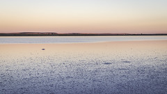 Bumbunga Salt Lake at Sunset (Filippo Pappalardo) Tags: pink blue sunset lake reflection salt australia saltlake southaustralia goldenhour lochiel bumbunga