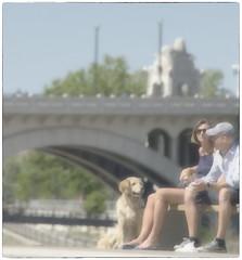 living the dream (Wanderfull1) Tags: dog calgary bikepath couple downtown sunny riverfront centrestreetbridge