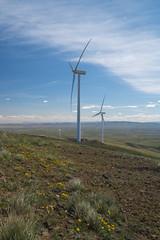 DSCF7156 (jiggumbob) Tags: power washingtonstate turbine windturbine sagebrush windpower windtower sagesteppe wildhorsewindandsolarfacility