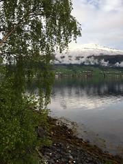 Langs fjorden -|- Along the fjord (erlingsi) Tags: nature norway clouds seaside norwegen fjord fjære fjorden noreg bjørk nordfjord innvik indvik bjørkeblad