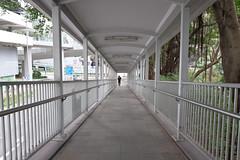"""enjoy your own company"" (ii) (hugo poon - one day in my life) Tags: lunch hongkong office solitude phone footbridge central walkway x70 murrayroad"