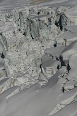 Autour des Grands Mulets- (7) (Samimages) Tags: ski rando chamonix montblanc alpinisme grandsmulets