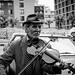Violinist violin seller