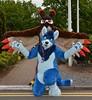 ConFuzzled 2016 202 (finbarzapek / SeanC) Tags: confuzzled cfz cfz16 2016 furry con convention furries fursuit fursuits animal costumes