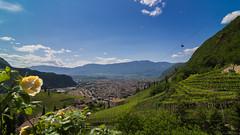 View to Bolzano (stefanromen) Tags: city italien italy nature landscape italia cityscape natur vineyards stadt cablecar landschaft sdtirol bolzano bozen altoadige southtyrol seilbahn weinberge renon ritten