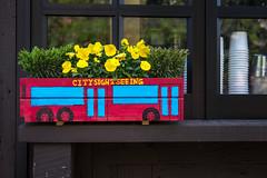 NYC-1.jpg (Patti Houston) Tags: nyc flowers ny newyork thebigapple