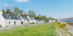 Welcome to Lochcarron, Wester Ross, May 2016 (allanmaciver) Tags: blue trees houses green ross highlands afternoon village walk visit welcome loch broom carron gorse wester lochcarron allanmaciver