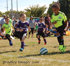 Going For The Goal. (daddydell28) Tags: bradleyimages sports sacramentocalifornia little league nikond40 players field ball soccer