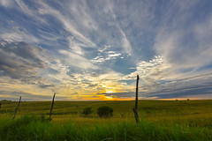 Early Morning Over Kansas Prairie (thefisch1) Tags: morning blue sky cloud sun color sunrise fence nikon colorful post kansas prairie nikkor radiant cirrus fenceline 1424 pastsure stemgrass