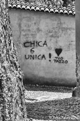 sto... pazzo! (Fabio Tacca) Tags: stopazzo pazzo fabiotacca italy piedmont biella lettere lettering font amore love graffiti muro wall pazzia crazy insanity streetphotography street biancoenero blackandwhite nikond3300