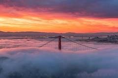 Morning Fog SF (Matt Grans Photography) Tags: sanfrancisco city morning fog skyline clouds sunrise bay goldengatebridge