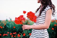 lovely poppies (janamartish) Tags: portrait woman flower film girl field analog 35mm canon spring hand dress autoportrait blossom kodak bokeh stripes poppy poppies faceless ektar 1000n