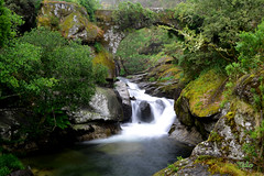 bridge over Almofrei river, Galicia - puente sobre el ro Almofrei (talourcera) Tags: bridge puente waterfall galicia cascada puentedepiedra xvicentury sigloxvi stonebrigde almofrei almofrey