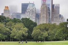 Skyline New York vom Central Park (dirklie65) Tags: trees usa newyork green skyline centralpark wiese bume