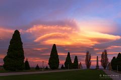 20160612-02-Hobart sunset from the Cenotaph (Roger T Wong) Tags: sunset orange clouds evening australia tasmania hobart cenotaph domain 2016 sony2470 rogertwong sel2470z sonyfe2470mmf4zaosscarlzeissvariotessart sonya7ii sonyilce7m2 sonyalpha7ii