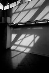 IMG_0997 (jumppoint5) Tags: city light urban blackandwhite building lines contrast grid shadows estate block hdb rochor