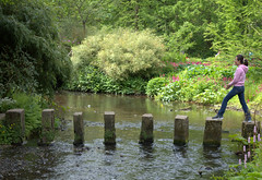 Stepping stones at Harewood House gardens (Tony Worrall Foto) Tags: harewoodhouse countryhouse harewood leeds westyorkshire england northern uk update place location north visit area county attraction open stream tour country welovethenorth gardens woman girl wet water steps flow fun stand jump steppingstones stepping stones walk walkway gaps river waterway