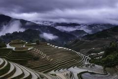The terraced fields in Longji (Massetti Fabrizio) Tags: world china white clouds landscape rice terrace guilin yangshuo cina yangshou guangxi longsheng nikond4s