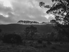 Paul Brandon Overland 2016 (7 of 140) (Paul Brandon  Rambling House Photography) Tags: mountain snow mountains walking nikon rainforest hiking australia tasmania cradle iphone