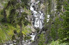 Mystic Falls, on the Little Firehole River (V. C. Wald) Tags: yellowstonenationalpark uppergeyserbasin biscuitbasin mysticfalls littlefireholeriver mysticfallsoverlook